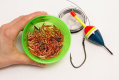 Worms for fishing bait and fishing accessories Stock Photo