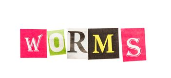 Worms l'inscription des lettres coupées image libre de droits
