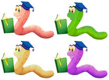 Worms reading. Illustration of the worms reading on a white background Royalty Free Stock Image