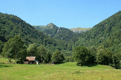 Wormsa valley in Alsace. Classified site in the Valley of Munster in Alsace Stock Images