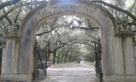 Wormsloe estate Stock Photos