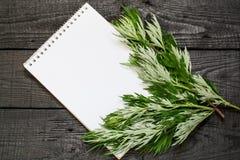 Wormwood ιατρικών εγκαταστάσεων Artemisia άψηνθος και σημειωματάριο Στοκ Εικόνες