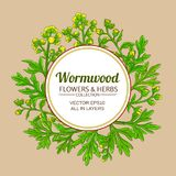 Wormwood vector frame. On color background royalty free illustration