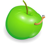 Wormy apple Royalty Free Stock Image