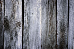Worn Barn Boards Royalty Free Stock Image