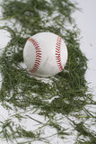 Baseball on Grass in Studio Above Royalty Free Stock Photos