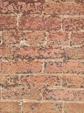 Worn brick II. Color photo of old brick building with worn and peeling paint on red bricks stock images