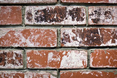 Worn bricks Royalty Free Stock Photography