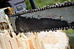 Chainsaw on fresh tree stump. Worn chainsaw on fresh tree stump royalty free stock photos