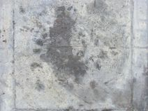 Worn gray grunge surface backdrop Stock Images