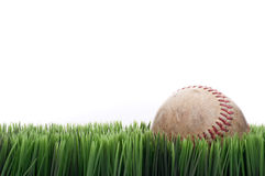 A worn leather baseball in grass Stock Images