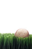 A worn leather baseball in grass Royalty Free Stock Photos