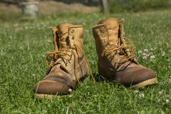 Worn out boots. Damp muddy and worn out boots with loose laces on grass Royalty Free Stock Images