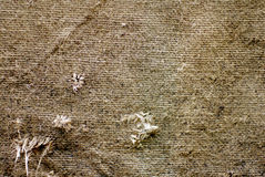 Worn Out, Old Sack Texture Royalty Free Stock Photography