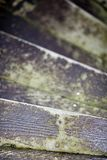 Old steps. Worn out staircase Stock Image