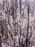 Worn Painted Wood Board Texture. Old worn and scratched white painted wood textured background royalty free stock photo