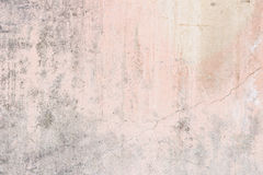 Worn pale pink concrete wall texture Stock Photography