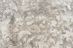 Worn pale white and black concrete wall texture background. Textured plaster.  royalty free stock photo