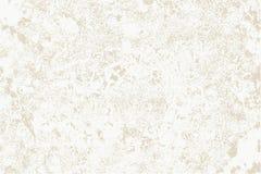 Worn plaster on beige surface. Stock Image