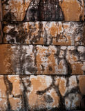Worn, rust and weathered paint on textured cement. Stock Images