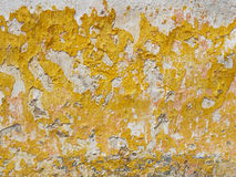 Worn stucco texture in old wall. Stock Photos