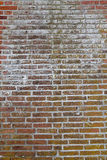Worn Weathered Dirty Red Brick Wall Background. Texture Royalty Free Stock Images