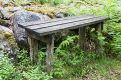 Worn Wooden Bench in Forest Stock Photography