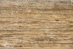 Worn Wooden Sandy Planks Royalty Free Stock Photography
