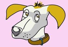 Worried doggy face Stock Photos