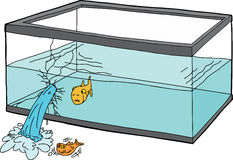 Worried Fish in Broken Tank. Isolated cartoon of worried goldfish watching a fish die vector illustration