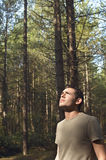 Worried Man Looking Up In Woods Stock Photo