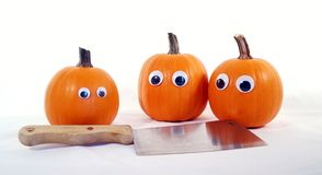 Worried Pumpkins Royalty Free Stock Photo