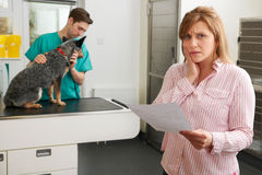 Worried Woman Looking At Bill In Veterinary Surgery Royalty Free Stock Photography