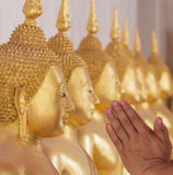 Worship Buddha statue Royalty Free Stock Image