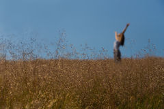 Worship in sunny meadow soft focus Royalty Free Stock Photo