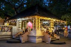 Worshippers på en buddistisk tempel inom templet av det sakrala tandrelikkomplexet i Kandy, Sri Lanka Arkivfoton
