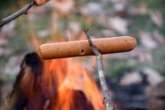 Worstbarbecue in het bos royalty-vrije stock foto's