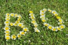 Wort BIO geschrieben mit Blüten Lizenzfreie Stockfotos