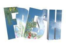 Wort 3D - frisch Lizenzfreie Stockbilder