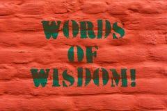 Wort, das Text Wörter von Klugheit schreibt Geschäftskonzept für Sachverständigengutachtenorientierung von jemand mit Wissen Zieg stockfotografie