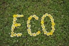 Wort ECO geschrieben mit Blüten Stockfoto