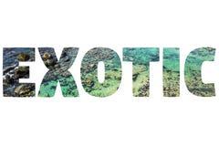 Wort EXOTISCH über blauem Meer stockbilder