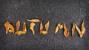 Wort HERBST auf Asphalt von gelben Blättern Abstraktion des Herbstes Konzept des Herbstes Lizenzfreie Stockfotografie