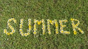 Wort SOMMER geschrieben mit Blüten Stockfoto