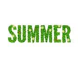 Wort-Sommer mit grünen Blättern Lizenzfreies Stockfoto