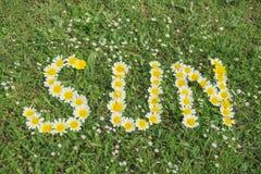 Wort SONNE geschrieben mit Blüten Lizenzfreies Stockfoto