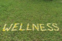 Wort WELLNESS geschrieben mit Blüten Stockbilder