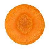 wortel dwarsdoorsnede royalty-vrije stock afbeelding