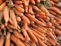 Wortelen bij landbouwersmarkt Royalty-vrije Stock Foto's