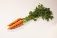 Wortelen - Karotten Royalty-vrije Stock Afbeeldingen